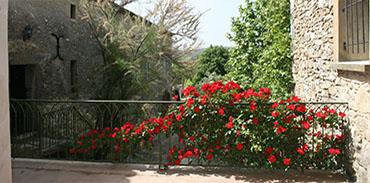 Terrasse vue sur le jardin